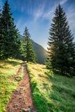 Amanecer maravilloso en el valle Chocholowska, montañas de Tatra en verano Fotografía de archivo libre de regalías