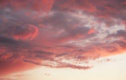 Amanecer rosado Imagen de archivo libre de regalías