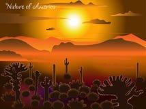 Amanecer sobre el desierto Gr?fico del vector De la naturaleza de la serie de América Arizona cerca del amanecer stock de ilustración