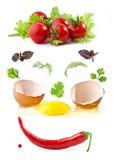 łamani jajeczni warzywa Obrazy Royalty Free