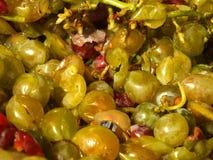 Łamani winogrona Fotografia Stock