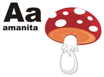 Amanita και abc απεικόνιση αποθεμάτων