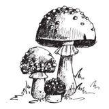 Amanita μυγών αγαρικών toadstool μανιταριών μυκήτων διαφορετικό τέχνης ύφους κόκκινο καπέλο απεικόνισης σχεδίου διανυσματικό απεικόνιση αποθεμάτων