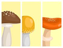 Amanita fly agaric toadstool cards mushrooms fungus different art style design vector illustration red hat. On white background. Harvest cooking healthy Stock Photo