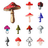 Amanita fly agaric toadstool mushrooms fungus different art style design vector illustration red hat Royalty Free Stock Photo