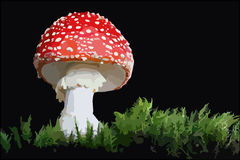 Amanita Royalty Free Stock Photo