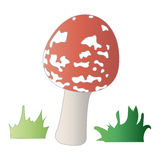 Amanita with grass. Vector illustration Royalty Free Stock Photos
