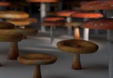 Amanita muscaria i paxil pieczarki ustalona 3d ilustracja Obrazy Royalty Free