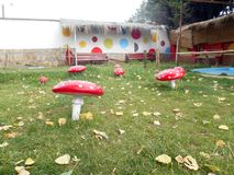 Amanita Muscaria nel parco di Oruro immagine stock libera da diritti