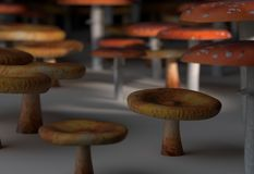 Amanita muscaria and paxil mushroom set 3d illustration Royalty Free Stock Images