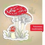 Amanita. Poisonous Mushroom on the textured beige background Royalty Free Stock Image