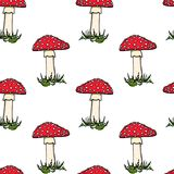 Amanita seamless pattern. Vector seamless pattern with hand drawn poisonous fungus Amanita. Ink drawing, graphic style. Beautiful design elements Stock Photos