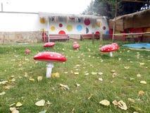 Amanite Muscaria en parc d'Oruro image libre de droits