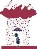 Amante bajo la lluvia Imagen de archivo libre de regalías