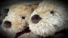 Amante de Big Bear Imagen de archivo