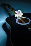Amante de la música Foto de archivo libre de regalías