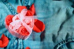 Amante dei jeans Fotografie Stock Libere da Diritti