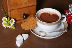 Amante do café Foto de Stock Royalty Free