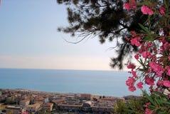 Amantea old. Italy calabria holiday panorama Stock Photos