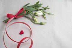 amantes Fotos de archivo libres de regalías