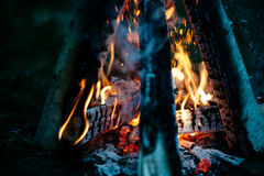 Amantes alrededor de la hoguera en la noche Foto de archivo libre de regalías