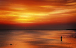 Amantes de la puesta del sol Foto de archivo libre de regalías