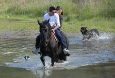 Amantes del montar a caballo Imagen de archivo libre de regalías