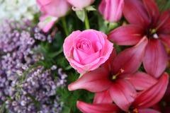 Amantes e Valentim das flores Fotos de Stock Royalty Free