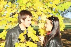 Amantes jovenes entre las hojas Fotos de archivo libres de regalías