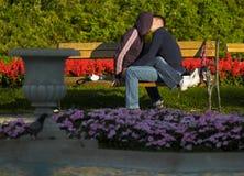 Amantes jovenes que se besan en el banco en el parque Fotos de archivo