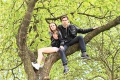 Amantes jovenes que se sientan en una corona de un árbol Fotografía de archivo libre de regalías