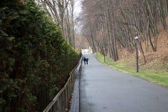 Amantes que caminan en el parque Imágenes de archivo libres de regalías