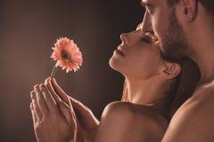 amantes sensuais despidos que guardam a flor, imagens de stock royalty free