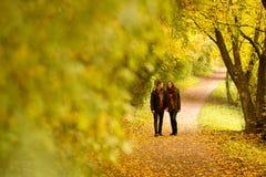 Amanti che camminano congiuntamente  Immagini Stock Libere da Diritti