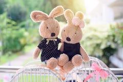 Amanti del coniglio della bambola Immagine Stock