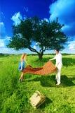 Amanti sul picnic Fotografie Stock Libere da Diritti