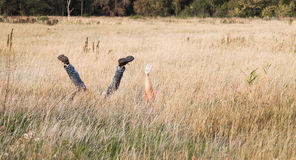 Amants ayant l'amusement dans l'herbe Photographie stock libre de droits