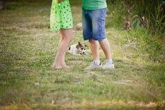 amants et un chien sur la promenade d'été Photos stock