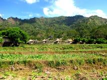 Amanwana Resort. Photo of the Amanjiwo resort in the hills surrounding the temple Borobudur Stock Image