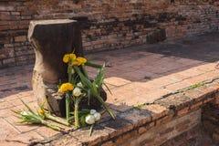 Łamany Buddha z Lotosowymi kwiatami, Ayutthaya Tajlandia Obrazy Royalty Free