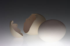 łamany jajecznej skorupy biel Zdjęcie Royalty Free