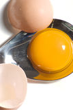 łamany jajko Obraz Stock