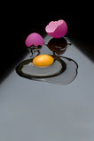 Łamany jajko Zdjęcia Stock