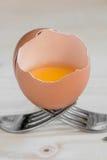 Łamany jajko odpoczywa na dwa rozwidleniach Fotografia Stock