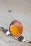 Łamany jajko odpoczywa na dwa rozwidleniach Zdjęcie Royalty Free
