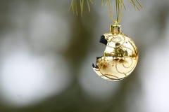 łamany ornament Zdjęcia Stock