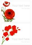 Amapola y tarjetas de felicitación color de rosa Foto de archivo libre de regalías