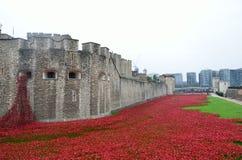 Amapolas de la conmemoración en la torre de Londres Foto de archivo libre de regalías