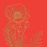 Amapolas en un fondo rojo Fotografía de archivo