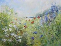 Amapolas pintadas en un prado del verano Fotografía de archivo libre de regalías